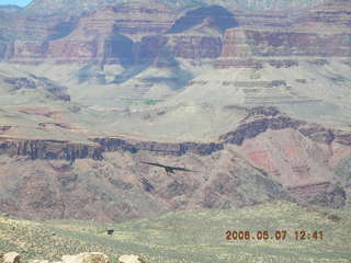 77 5t7. view from South Kaibab trail