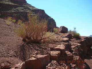 117 5t7. view from South Kaibab trail