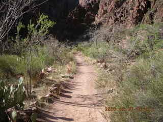 162 5t7. North Kaibab trail from Phantom Ranch