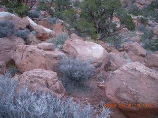 Zion National Park - Watchman hike - rocks on loop trail
