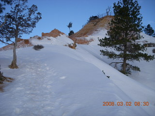 Bryce Canyon - Fairyland/Rim hike