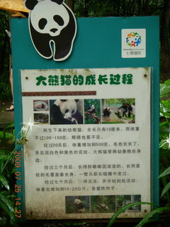 227 6xr. China eclipse - Guilin SevenStar park - panda exhibit sign