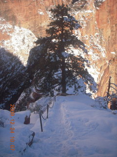 51 72q. Zion National Park - Angels Landing hike