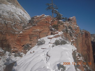 63 72q. Zion National Park - Angels Landing hike