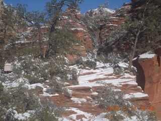 88 72q. Zion National Park - west rim hike